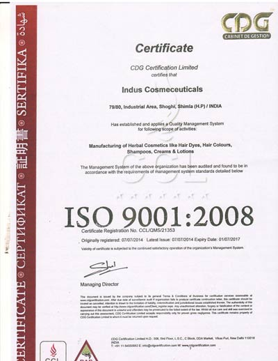 indusvalley ISO-9001-certification