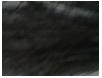 botanical black hair color